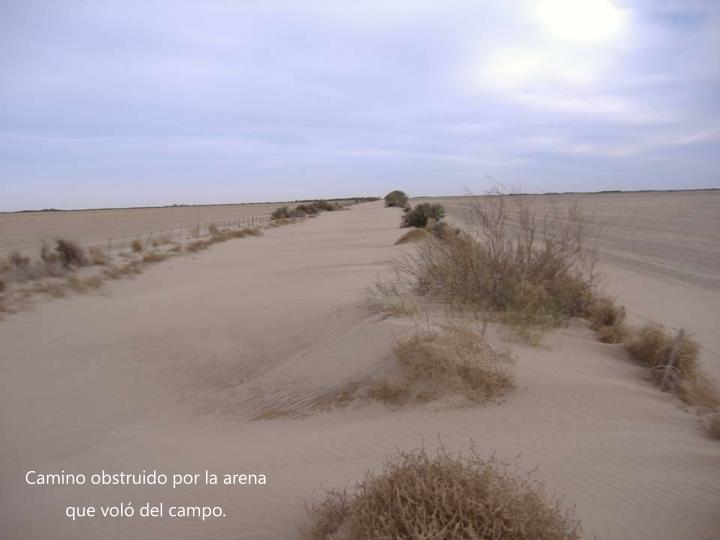 Camino obstruido por la arena