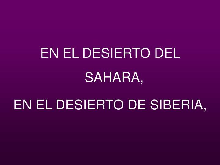EN EL DESIERTO DEL SAHARA,