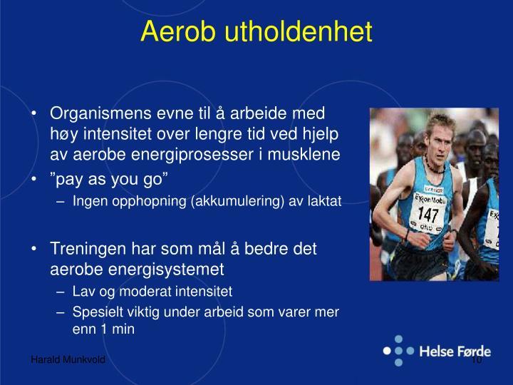Aerob utholdenhet