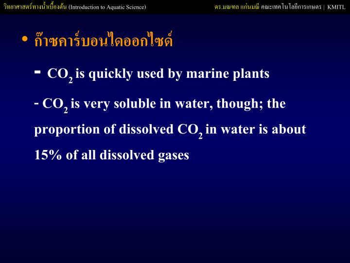 ก๊าซคาร์บอนไดออกไซด์