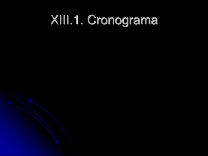 XIII.1. Cronograma
