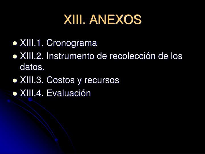XIII. ANEXOS