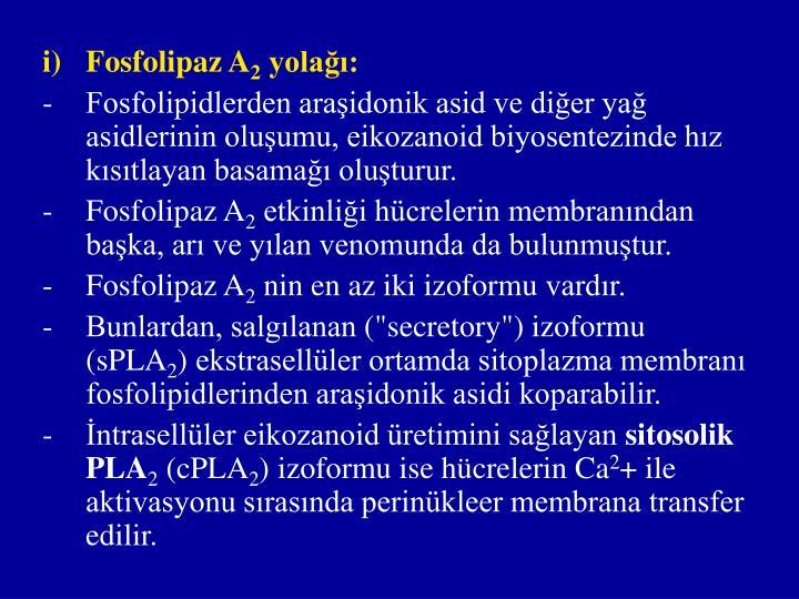 Fosfolipaz A