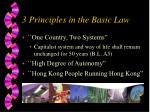 3 principles in the basic law