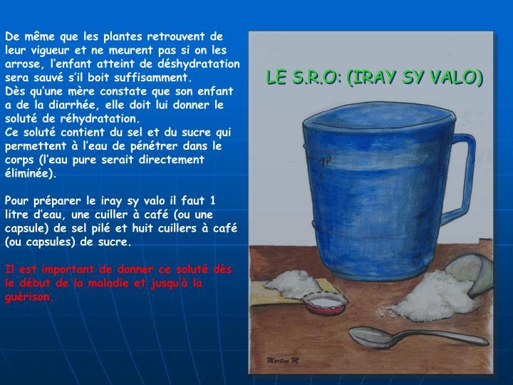 LE S.R.O: (IRAY SY VALO)