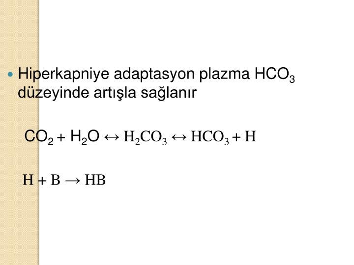 Hiperkapniye adaptasyon plazma HCO