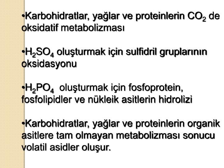 Karbohidratlar, yağlar ve proteinlerin CO