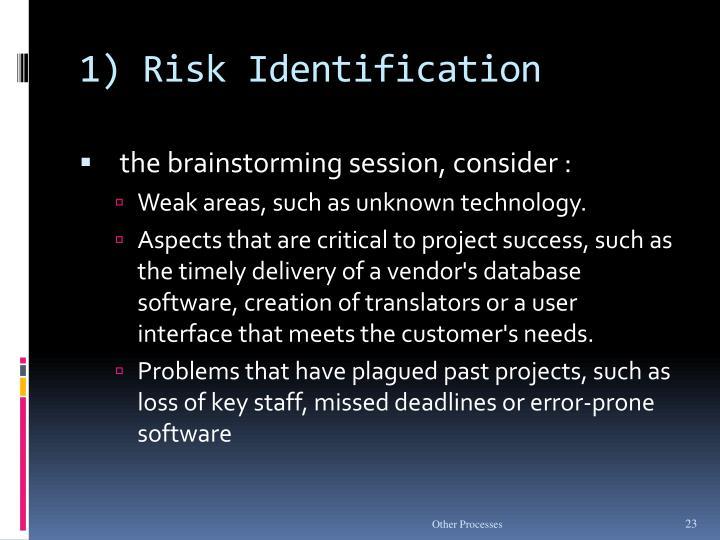 1) Risk Identification