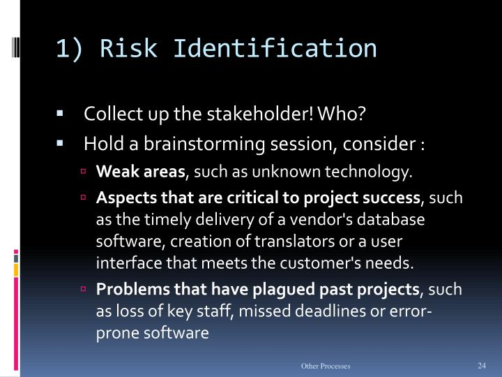 1) Risk Identification