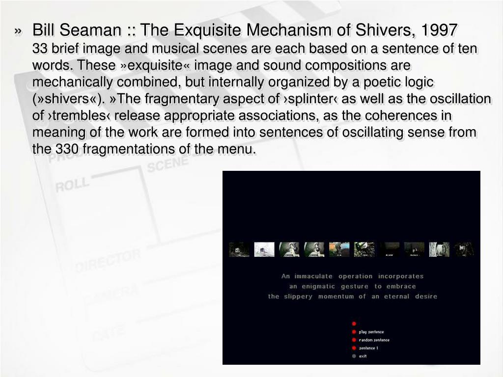Bill Seaman :: The Exquisite Mechanism of Shivers, 1997
