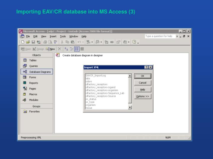 Importing EAV/CR database into MS Access (3)