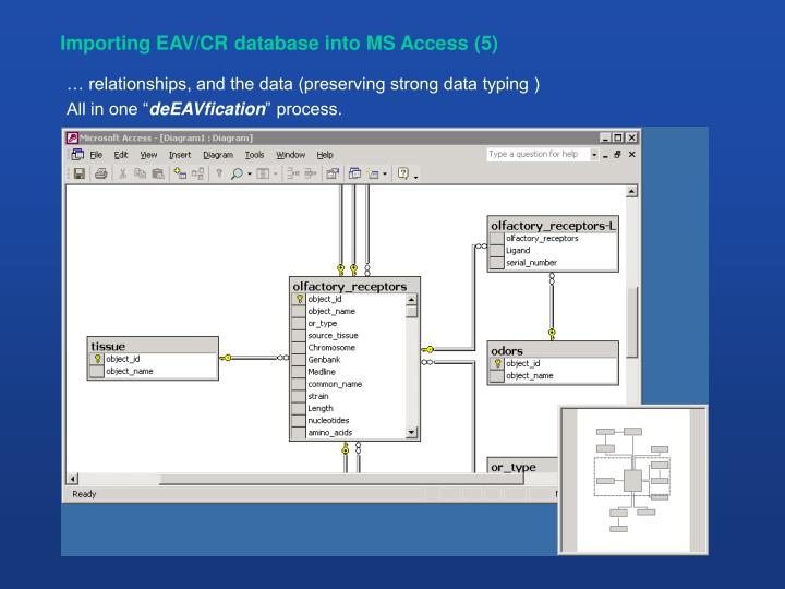 Importing EAV/CR database into MS Access (5)