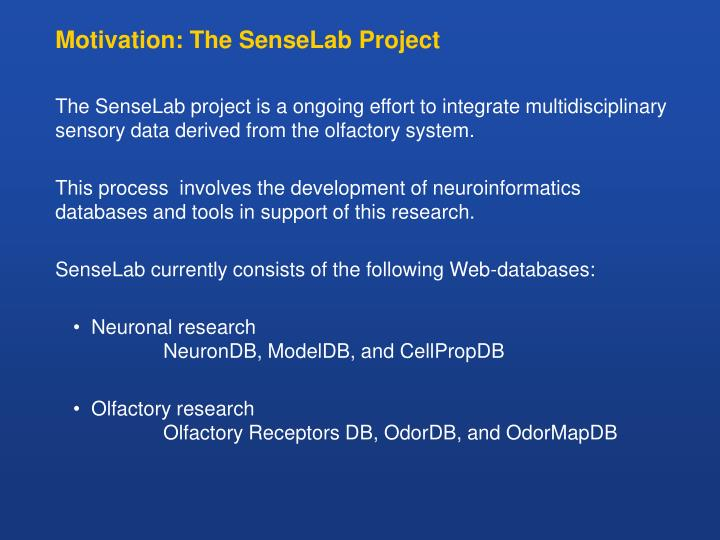 Motivation the senselab project