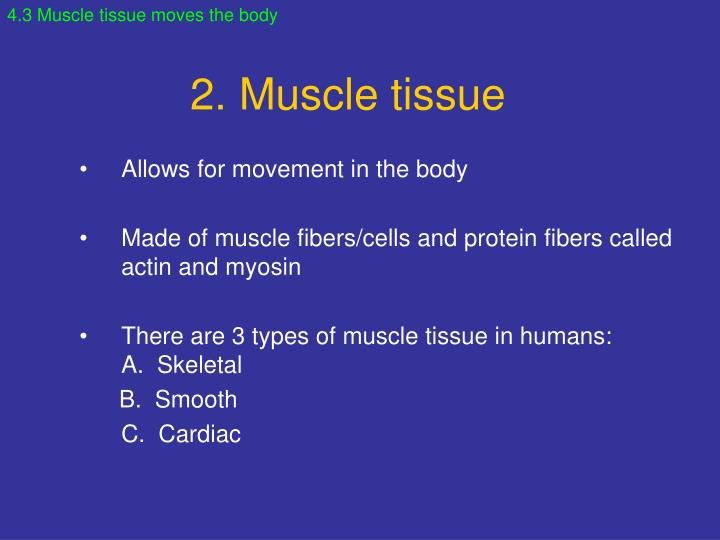 4.3 Muscle tissue moves the body