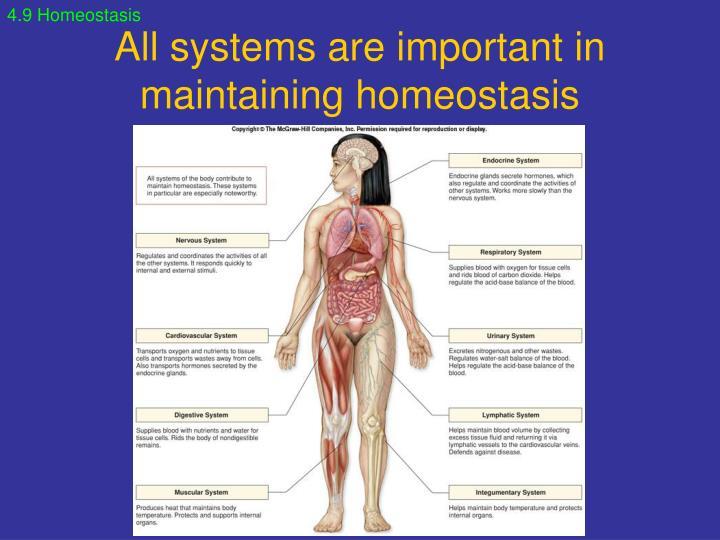 4.9 Homeostasis