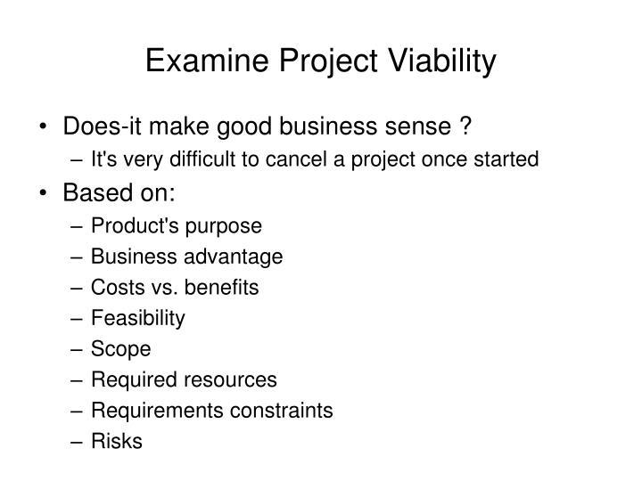 Examine Project Viability