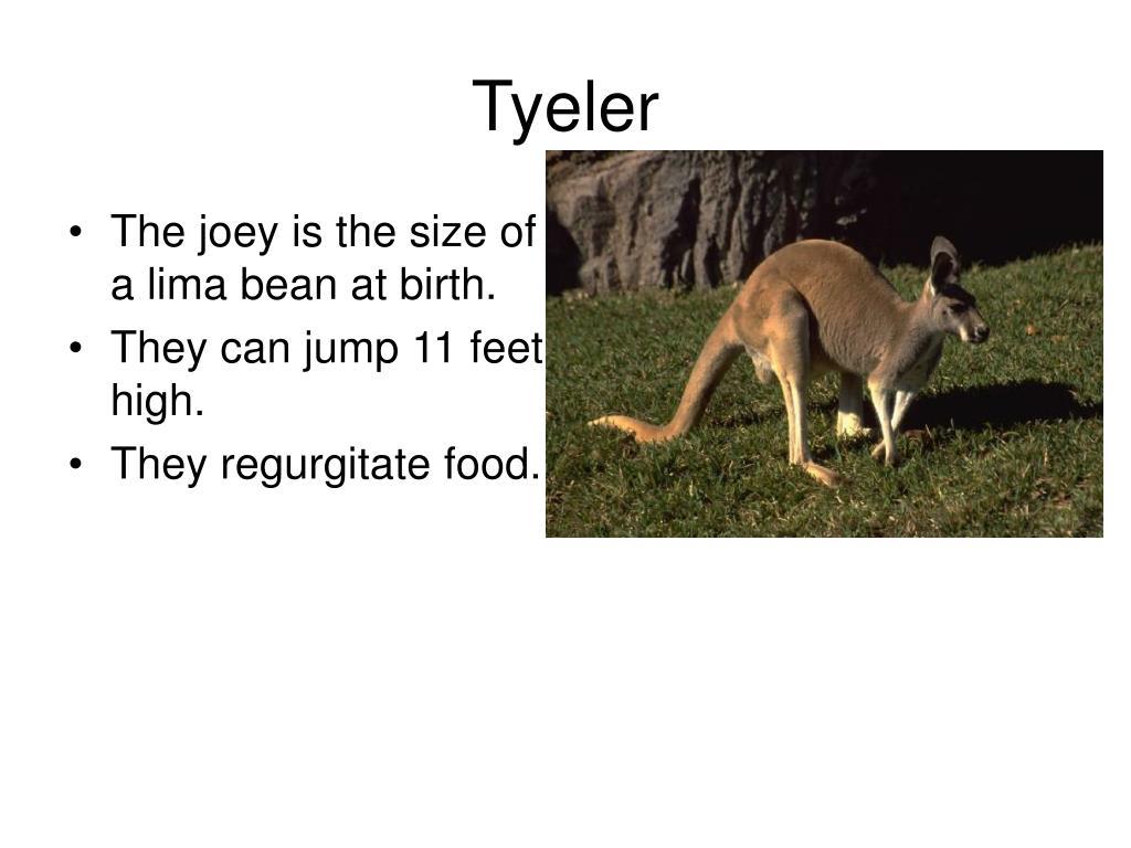 Tyeler