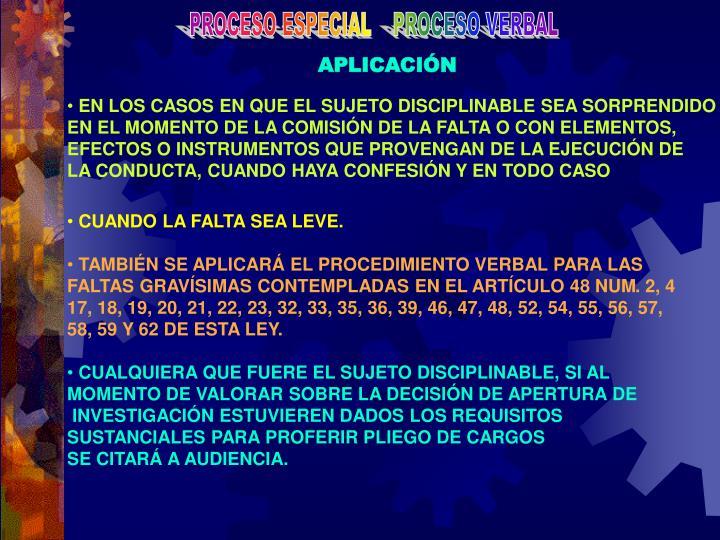 PROCESO ESPECIAL    PROCESO VERBAL