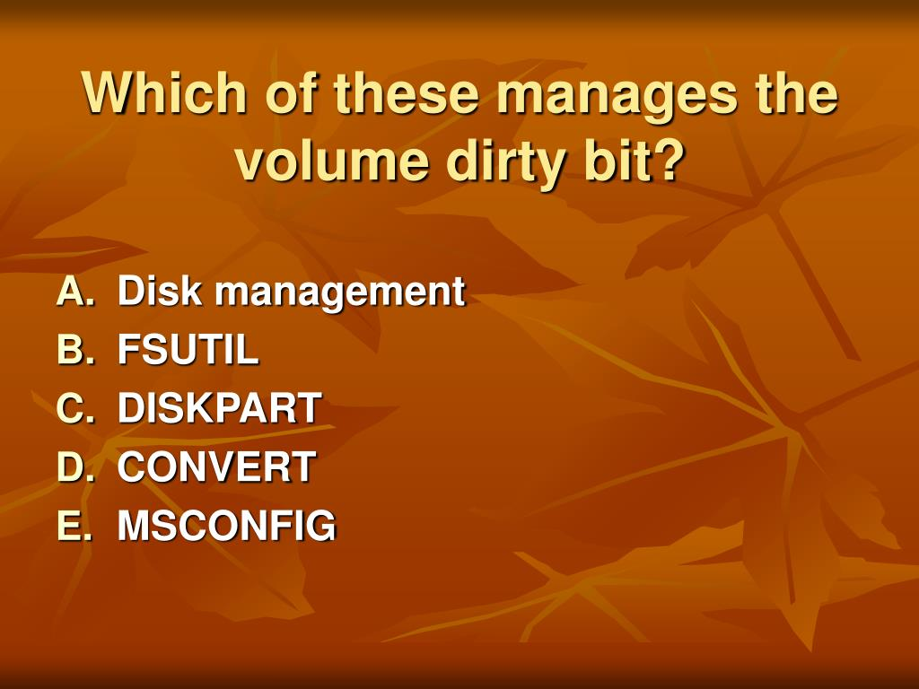 Which of these manages the volume dirty bit?