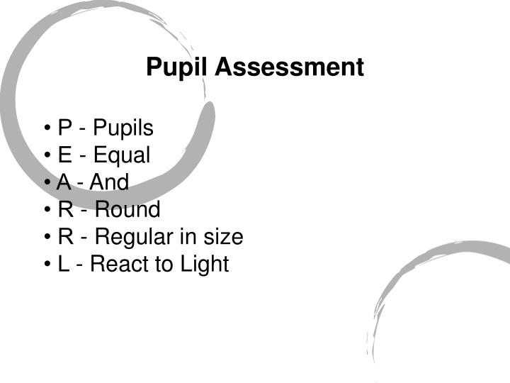 Pupil Assessment