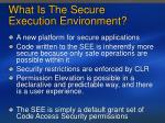 what is the secure execution environment