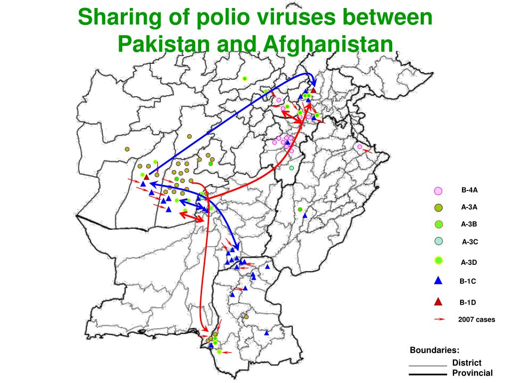 Sharing of polio viruses between