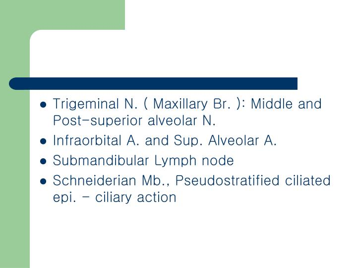 Trigeminal N. ( Maxillary Br. ): Middle and Post-superior alveolar N.