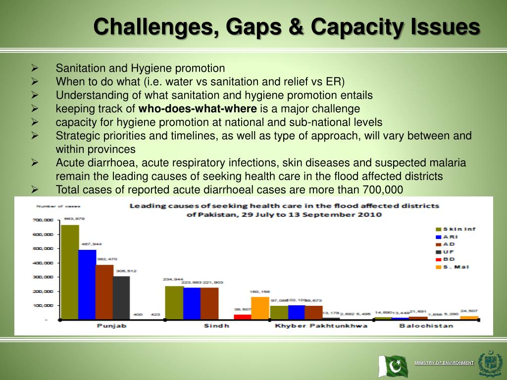 Challenges, Gaps & Capacity Issues