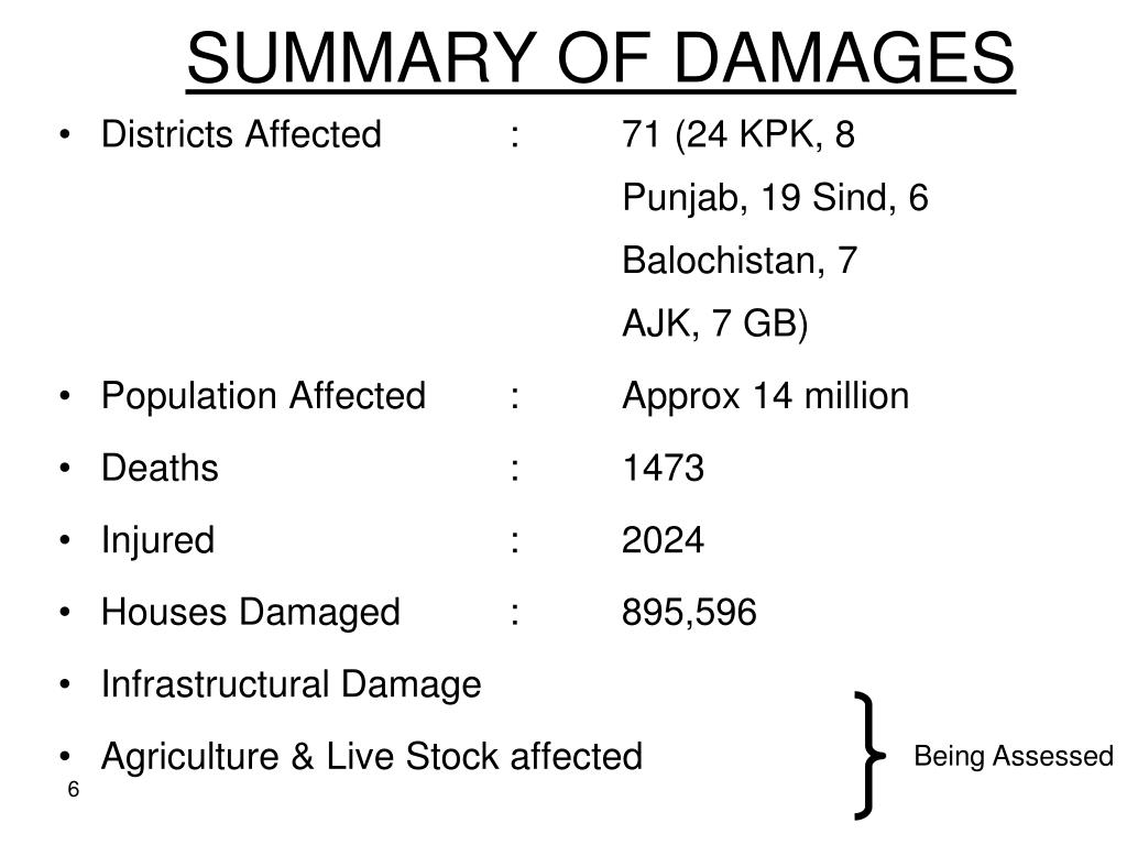 SUMMARY OF DAMAGES