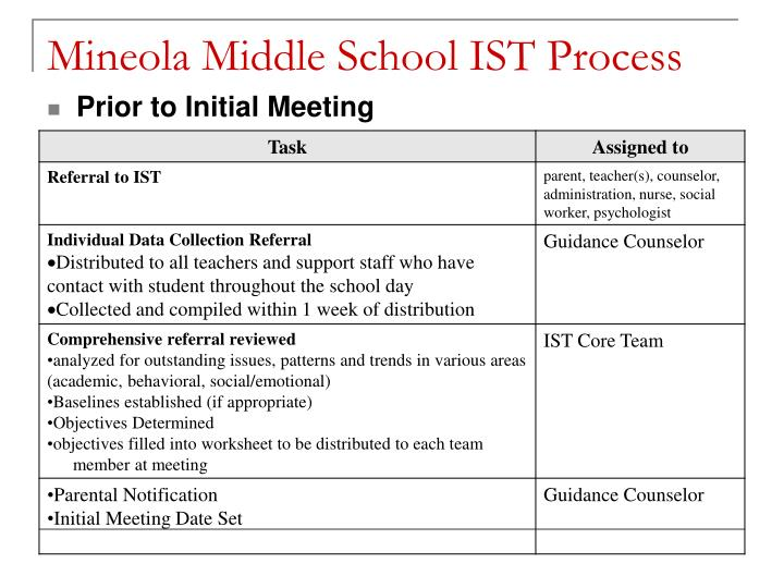 Mineola Middle School IST Process