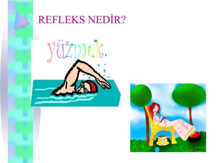 REFLEKS NEDR?