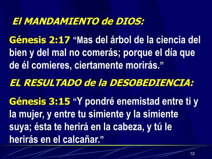 El MANDAMIENTO de DIOS: