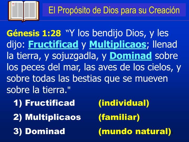 El Propósito de Dios para su Creación