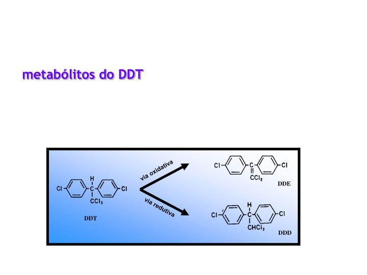metabólitos do DDT