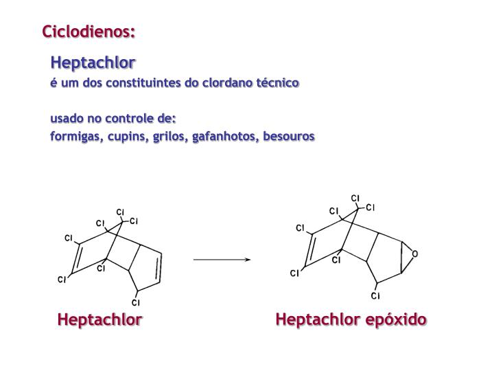 Ciclodienos: