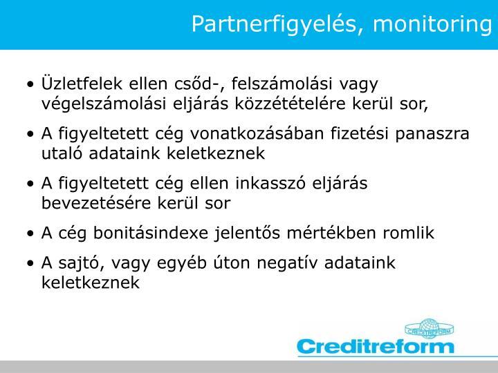 Partnerfigyelés, monitoring
