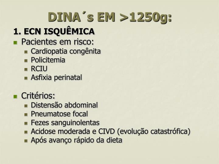 DINA´s EM >1250g: