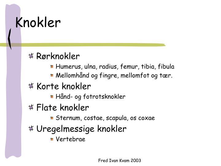 Knokler