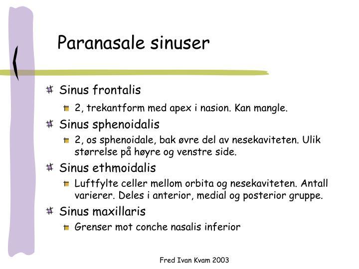 Paranasale sinuser