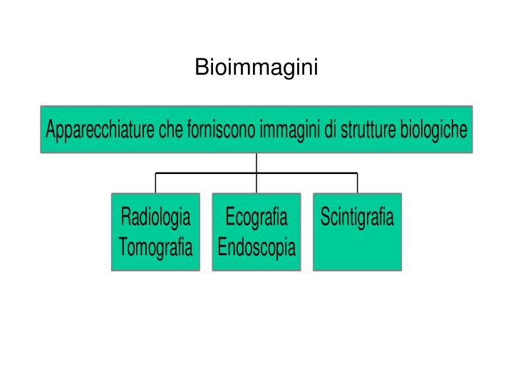 Bioimmagini