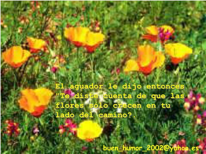 """El aguador le dijo entonces """"Te diste cuenta de que las flores sólo crecen en tu lado del camino?."""