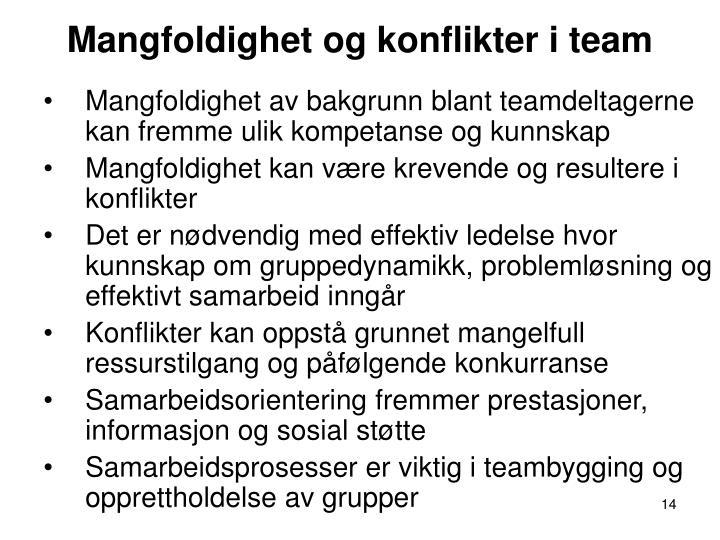 Mangfoldighet og konflikter i team