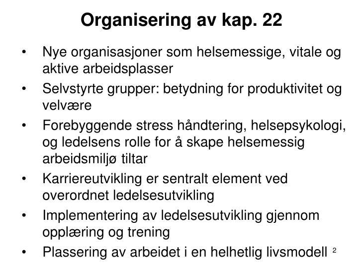 Organisering av kap. 22