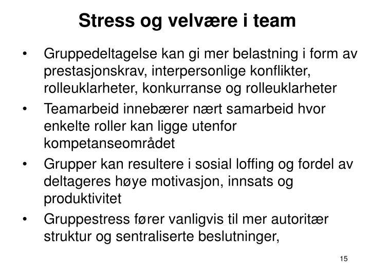 Stress og velvære i team