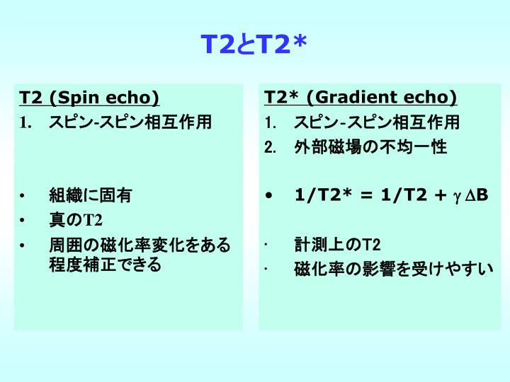 T2 (Spin echo)
