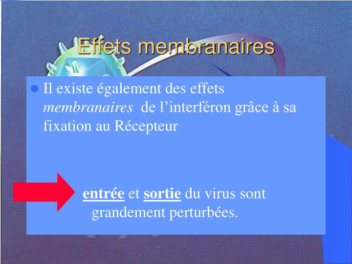 Effets membranaires