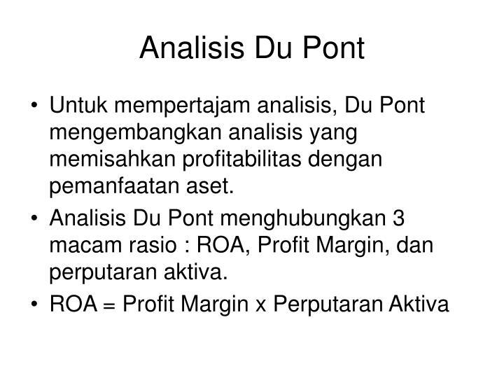 Analisis Du Pont