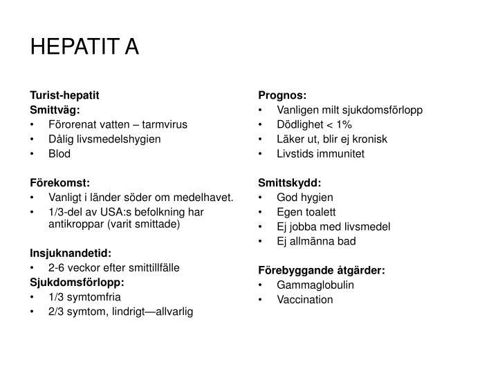 Turist-hepatit