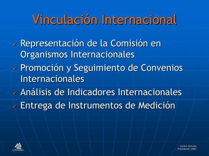 Vinculación Internacional
