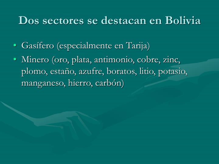 Dos sectores se destacan en Bolivia